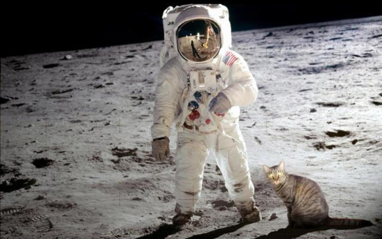 Moonlandingwasfake